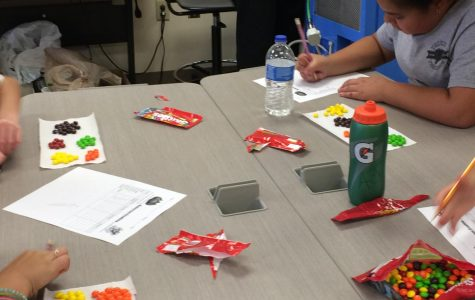 6th Grade Explores Fractions, Decimals & Percents with Candy!